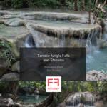 334 photos of Terrace Jungle Falls and Streams
