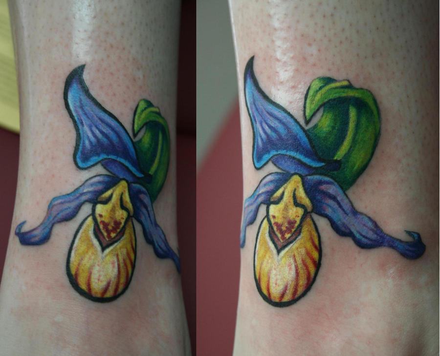 Pin Of Softness Tattoos Tattoo This Mango Fruit Drawing on ...