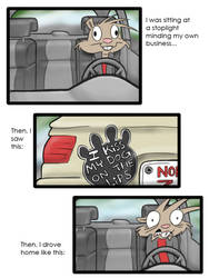 things people admit on thier cars