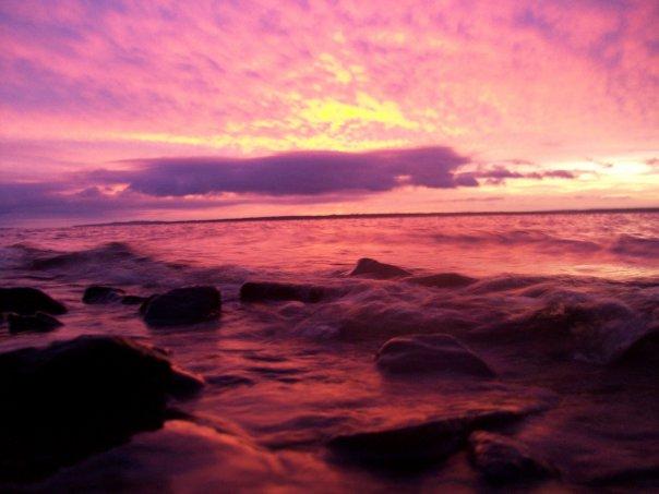 pink 2 by jasminenicolex