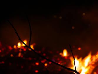 Fiery by dude2k
