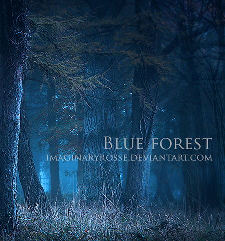 Blue Forest by ImaginaryRosse