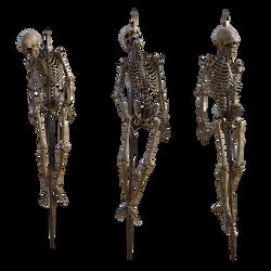 Impaled Skeletons Stock