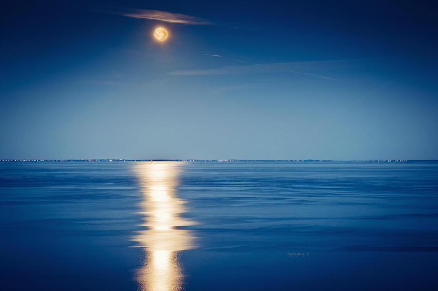 Soleil de Nuit by Zwoing