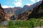 Grand Canyon Stock 5