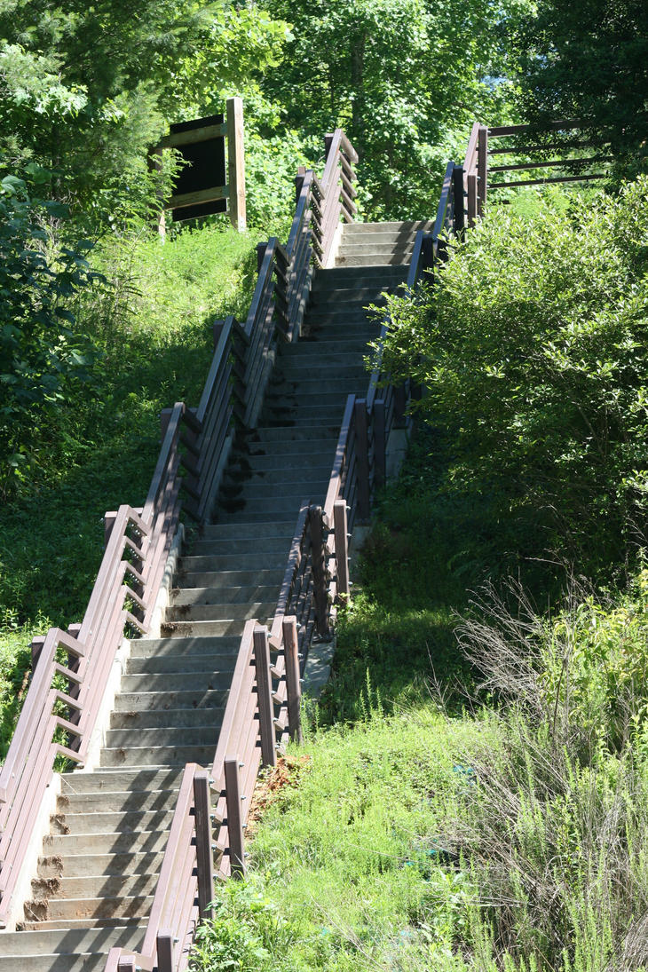Stairs in the Woods Stock by GloomWriter