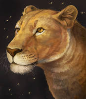 Lion Doodle Finished! by Noctualis