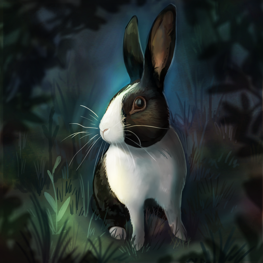 My bunny! by Noctualis