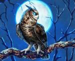 Drawtober 3 - night owl