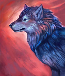Experimental Wolf by Noctualis