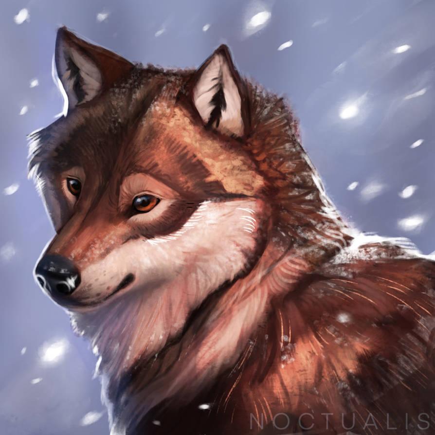 Snowstorm by Noctualis