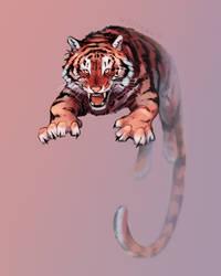 tiger DTIYS