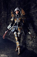 Demon Hunter Diablo3 Cosplay by Kotori-Cosplay