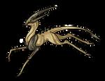 Bronze Cervos -CLOSED-