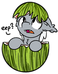 Melon bat