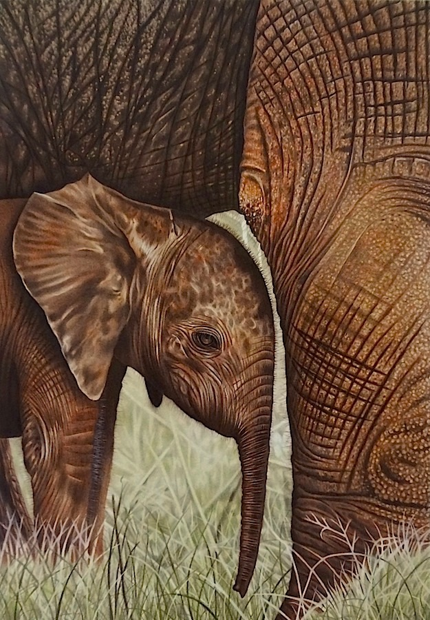 Elephant (Elefanti) by LucaCastiglione
