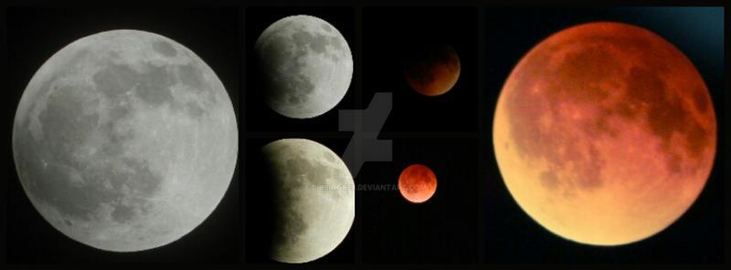 lovely eclipse by brisingr29