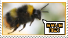 Save the Bumblebees Stamp by MiraKHall