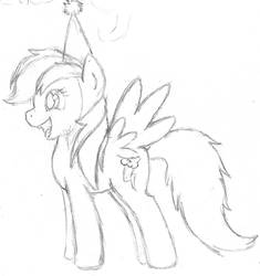 Rainbow Dash Birthday Sketch