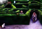 Traversing a Cat's Labyrinth