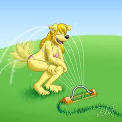 It's Sprinkler Time by stevethepocket