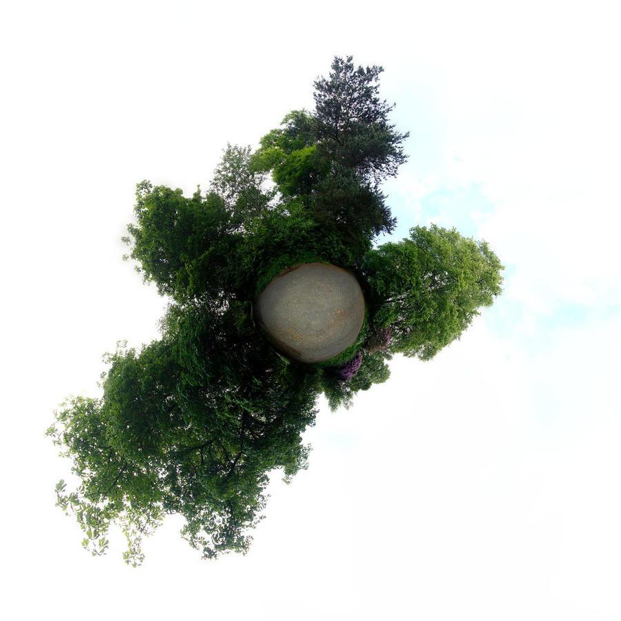 Little Planet I