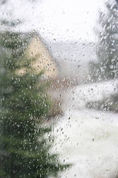Rainy Day I by jaredarm