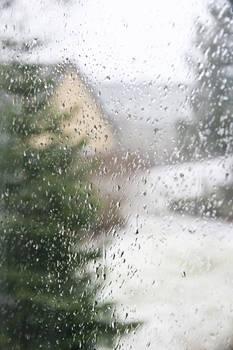 Rainy Day I