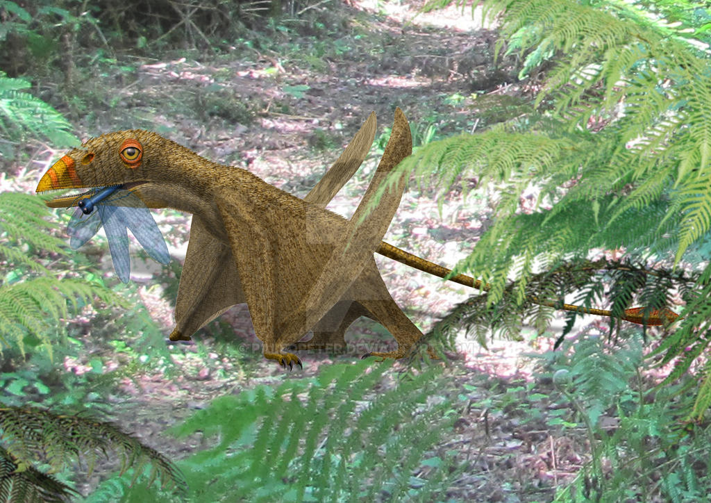 Peteinosaurus by paleopeter