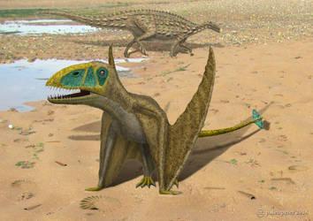 Dimorphodon with Scelidosaurus. by paleopeter