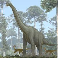 Giraffatitan by paleopeter