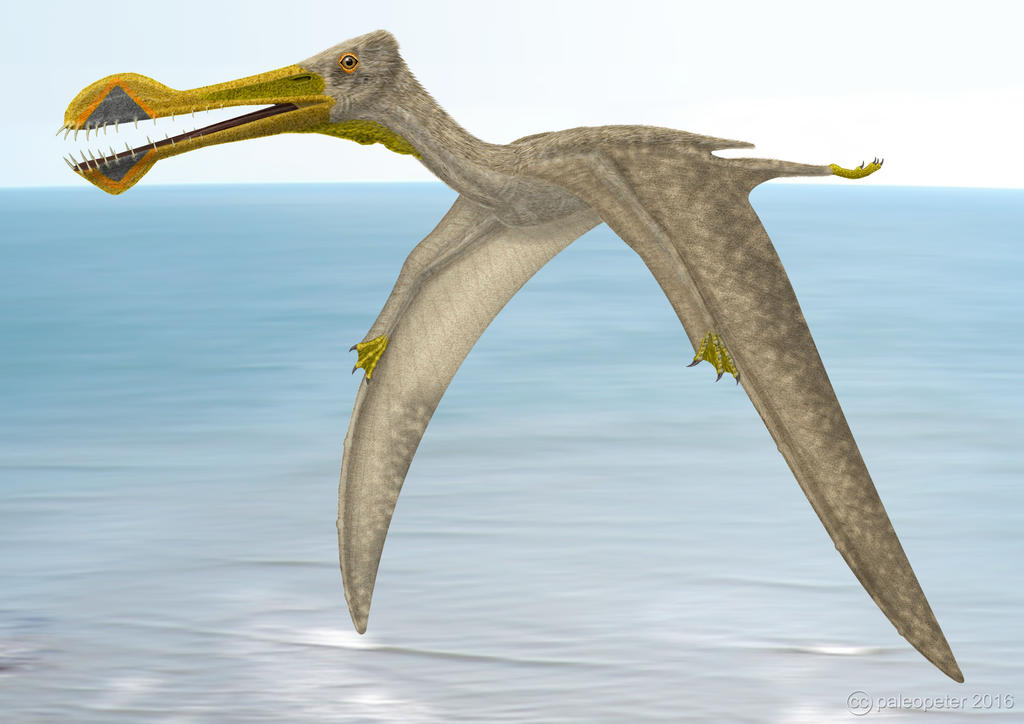 Tropeognathus landfall by paleopeter