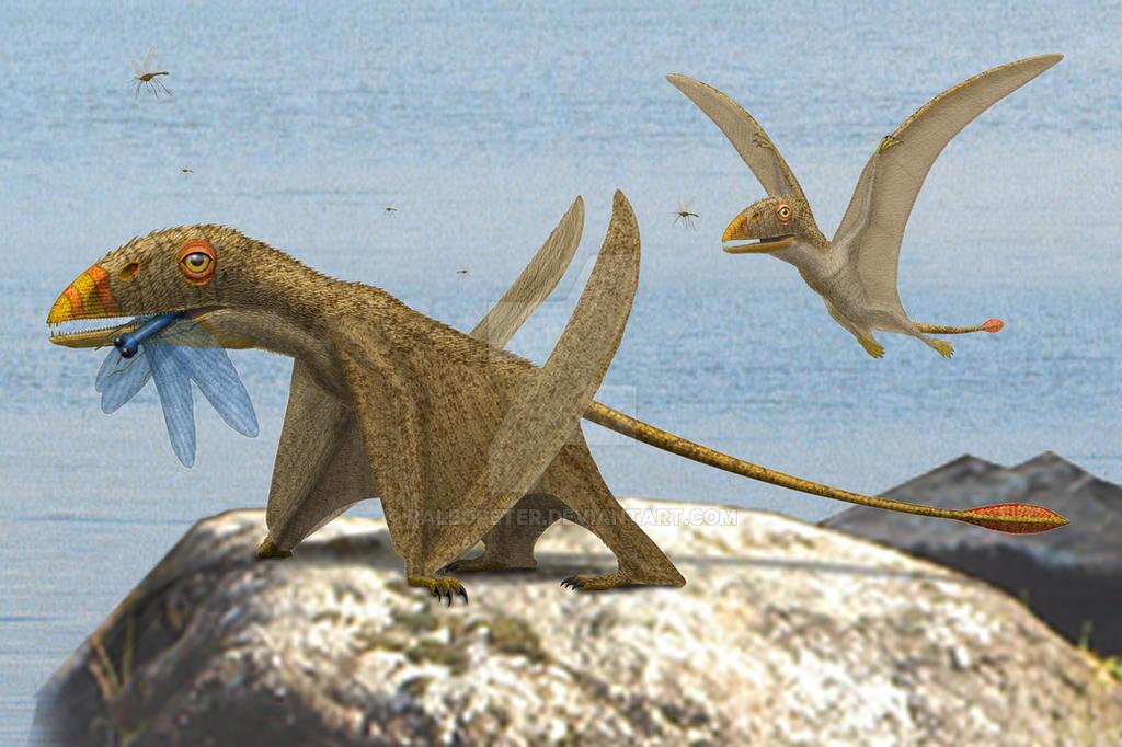 Peteinosaurus zambelli by paleopeter