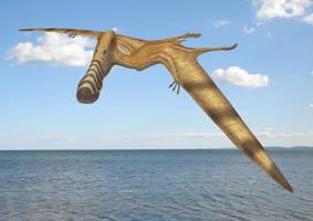 Plataleorhynchus streptophorodon by paleopeter
