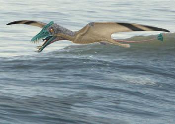 Dorygnathus by paleopeter