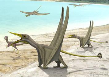 Rhamphorhynchus + Compsognathus by paleopeter