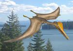 Gnathosaurus sublatus