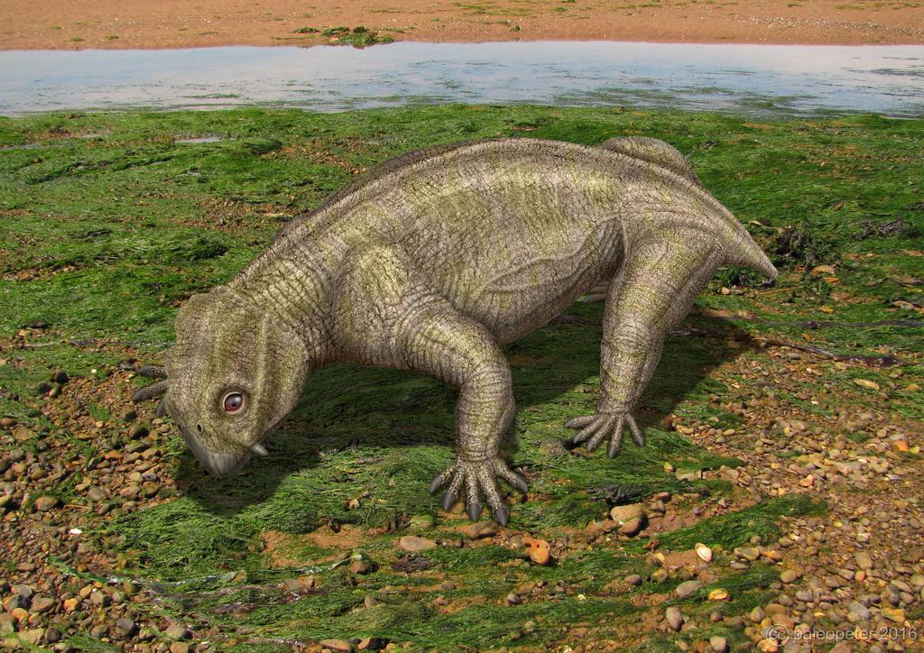 Lystrosaurus by paleopeter
