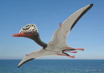 Douzhanopterus zhengi by paleopeter