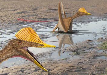 Pterorhynchus wellnhoferi. by paleopeter