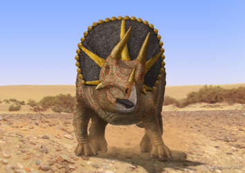 Triceratops by paleopeter