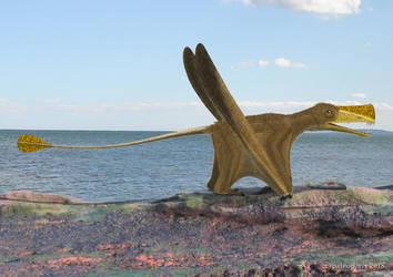 Austriadactylus by paleopeter