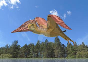 Lacusovagus magnificens