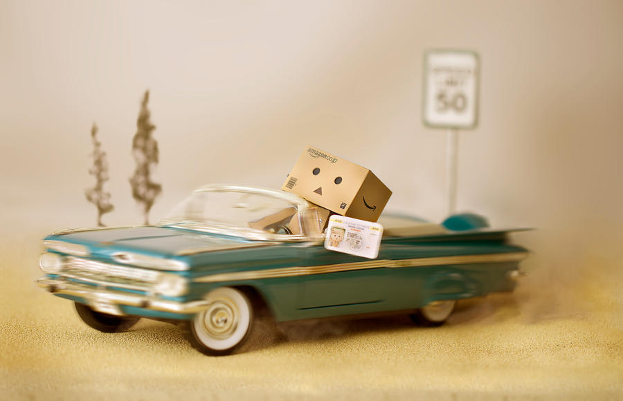 Danbo's License by BryPhotography
