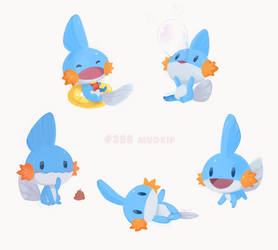 Download Mudkip - Pokemon Mystery Dungeon Rescue Team Dx Mudkip ... | 250x278