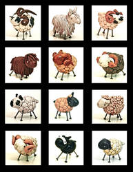 Sheep toys