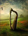 The Harp by Mayagraphic