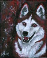 Happy husky by Kattvalk