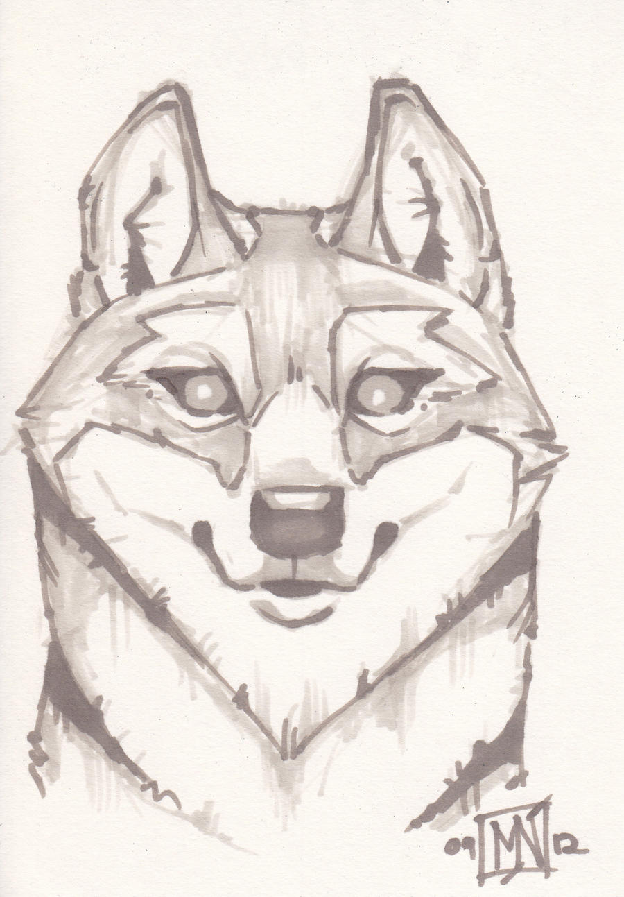 The wolf by Kattvalk on DeviantArt