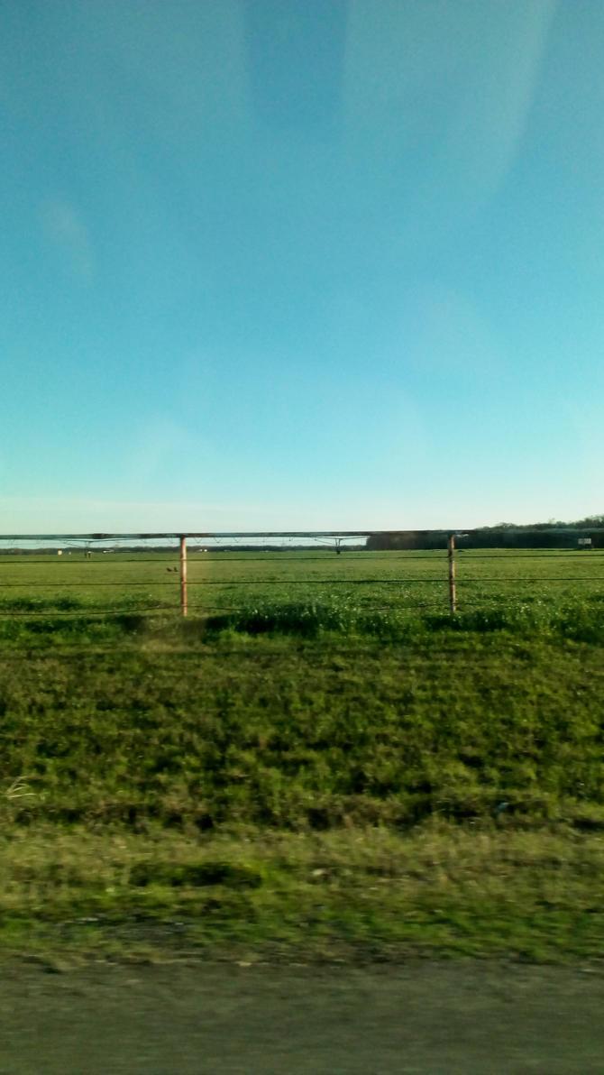 Miles of Texas. by MOTLEYLOMBAXCRUE666